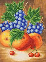 Сочные фрукты РКЗ-004