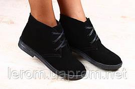 Стильные современные ботинки женские
