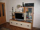 Мебель в гостинную на заказ из ЛДСП, фото 2