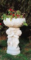 Ваза садовая обложка Келикантуса