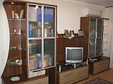 Меблі у вітальню на замовлення з ЛДСП, фото 3