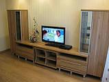 Мебель в гостинную на заказ из ЛДСП, фото 4