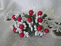 Гілочка біла з червоними ягідками
