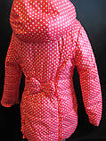 Куртки для девочек весна-осень, фото 4