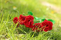 Рози з фетру