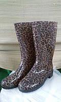 Женские резиновые сапоги Леопард 40-41
