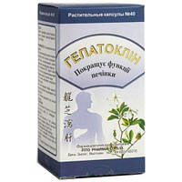 Fito Pharma (Фито Фарма) ГЕПАТОКЛИН № 40