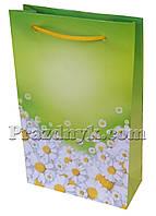 Подарочный пакет 23х18 см