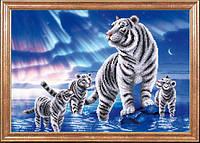 Белые тигры МК КС-081