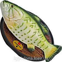 """Поющая и танцующая рыба """"Весёлый карп"""""""