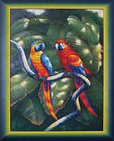 Краски джунглей МК Б-011
