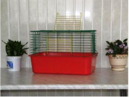 СТ Кролик-50 клітка 50х35х32см
