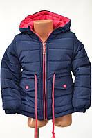 Куртка на осень синего цвета