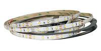 Светодиодная лента SMD 2835 (60 LED/m) IP65 Standart