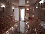 Облицовка Мозаикой (бани,сауны,бассейны) занимаемся строительством коттеджей и частных домов., фото 5