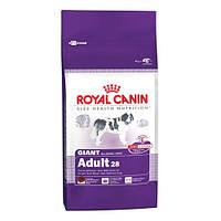 Сухой корм для собак Royal Canin Giant Adult 28 15 кг