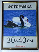 Фоторамка пластиковая А3, рамка для фото 1415-06, фото 1