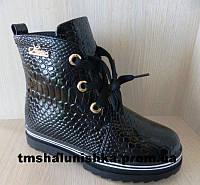 Ботинки для девочки черные Clibee
