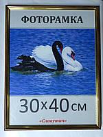 Фоторамка ,пластиковая, 30*40, рамка, для фото, дипломов, сертификатов, грамот, картин, 1415 1415-95