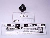 Пробка М10*1,5; 316121-П29