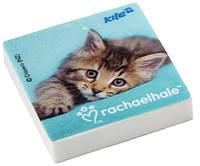 Ластик квадратный Rachael Hale 22739R13-101K