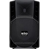 BIG Пассивная акустическая система BIG RC15F