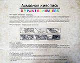 АЛМАЗНАЯ ЖИВОПИСЬ (40x50 см), фото 4
