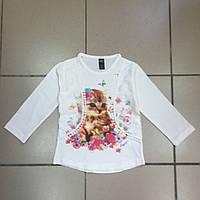 Детская одежда Реглан для девочек  р.8-9 лет