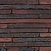 Клинкерный кирпич Terca Wasserstrich special e1 long 495/100/38