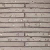 Клинкерный кирпич Terca Wasserstrich special grey polaris long 510/100/40