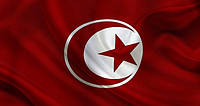Доставка сборных грузов «под ключ» из Туниса