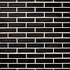 Клинкерный кирпич Terca Terre noire пустотелый 220/105/54