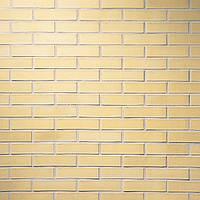 Клинкерный кирпич Terca Terre ivoire пустотелый 220/105/54