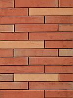 Клинкерный кирпич Terca Tilia light red 288/88/48