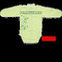 Детский боди с длинным закрытым рукавом р. 62 с начесом ткань ФУТЕР (байка) 100% хлопок ТМ Алекс 3188 Зеленый1