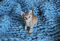 Плед ручной работы, вязанный из толстой пряжи, 100% шерсть. Цвет голубой
