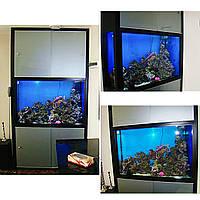 Аквариум морской прямоугольный с гнутым стеклом