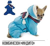 Pet Fashion Костюм Индиго XS2