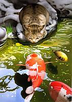"KHO 2437 ""Кот на берегу пруда с карпами"" Роспись по номерам на холсте (без коробки) 40х30см"