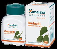 Гудучи (Guduchi) 60 таб - Himalaya