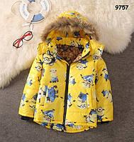 Демісезонна куртка Minions для хлопчика. 130 см