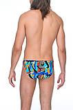 Яркие  мужские плавки для купания  52, фото 2