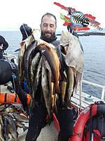 Комментарии о нашей продукции от президента Федерации Подводного Спорта Грузии на Чемпионате: KristiansundCup 2016 - 5-6th of August