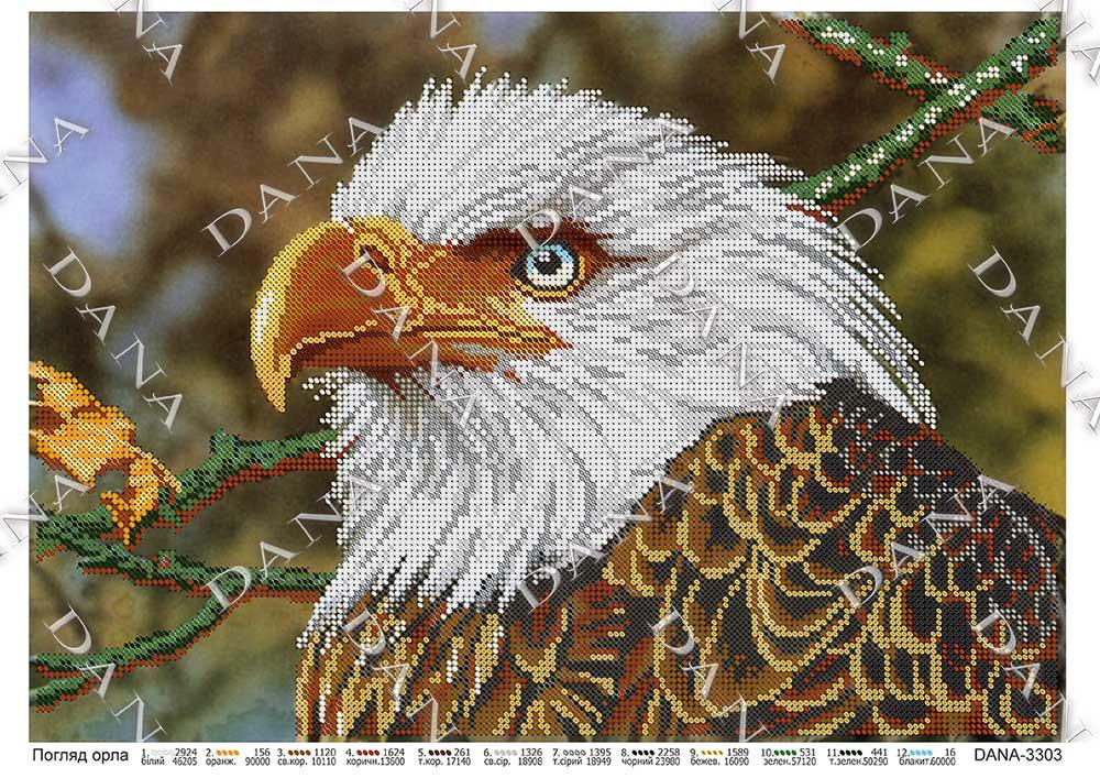 Погляд орла