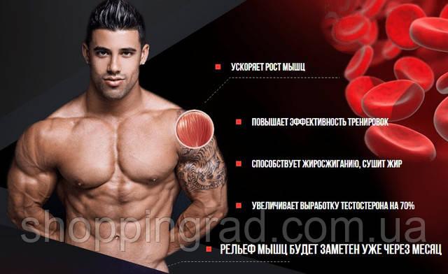 стол для как тестостерон влияет на рост мышц подать заявление накопительной