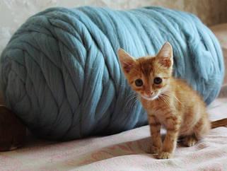 Толстая шерстяная пряжа 100% шерсть 25-26 мкрн., для вязания пледов, кардиганов и пр. Топс. Лента
