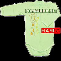 Детский боди с длинным  рукавом р. 74 с начесом ткань ФУТЕР (байка) 100% хлопок ТМ Алекс 3188 Зеленый