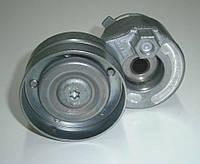 Натяжитель ремня генератора на Renault Trafic / Opel Vivaro 1,9dCi (+AC) с2001... Ruville (Германия), EVR55585, фото 1