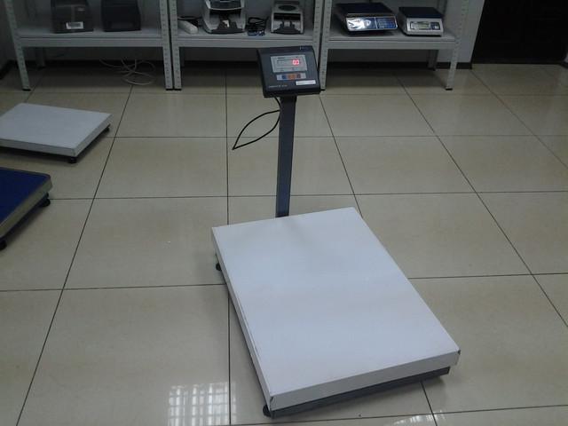 весы для склада ВН-300-1-А (600*800)