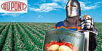 Титус, 25 в.г. (0,05 кг) - послевсходовый гербицид на кукурузу, томаты, картофель и др.